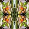 Топ-5 способов вкусно и полезно приготовить овощи