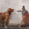 9 вещей, которым ребенка научат домашние животные
