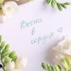 Короткие смс поздравления с 8 марта: лучшие пожелания в женский день