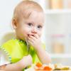 ВСЕ О ПРИКОРМЕ: секреты хорошего аппетита