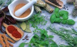 Детское питание: приправы и соусы. Разрешены или нет?
