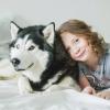 Ребенок боится собак. 15 способов избавиться от страха