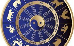 Семейный гороскоп на 2014 год, год Лошади. Часть III
