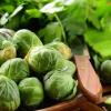 Квашеная капуста: полезные свойства, о которых вы раньше не знали