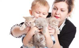 Воспитание и развитие от домашних животных