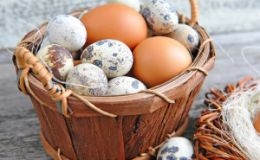 Перепелиное мясо и яйца в рационе ребенка