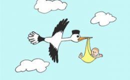 Мой ребенок: пол будущего малыша родители узнают во втором триместре беременности