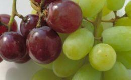 Какой виноград давать ребенку?