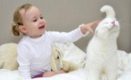 Как ухаживать за домашним животным, если в доме есть ребенок?