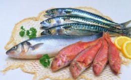 Ученые: морепродукты опасны для женского здоровья