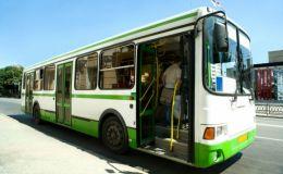 Путешествие с ребенком на автобусе: важные нюансы