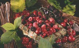 5 принципов правильного хранения сезонных овощей и ягод