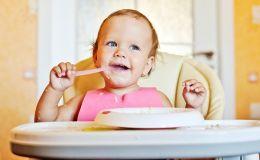 Когда вводить куриное мясо в прикорм ребенка?