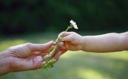Обоняние поможет выявить аутизм у детей