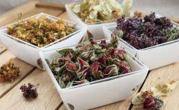 Фитоаптечка для больного горла: 8 растений, которые помогут при кашле