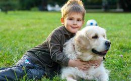 Животные и дети. Почему им нужно жить вместе