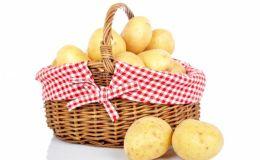 Какая картошка полезна детям