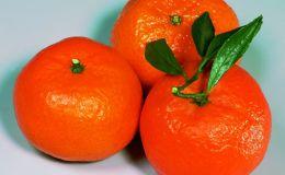 Почему мандарины самые полезные цитрусовые