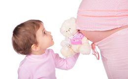Какие функции выполняет плацента при беременности?