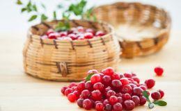 Самая полезная зимняя ягода: скрытые бонусы клюквы, о которых вы не знали
