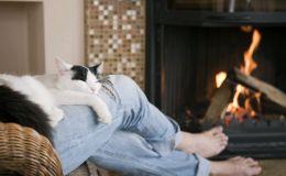 Беременная и кошка: можно ли жить в одном доме?
