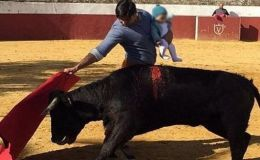 Коррида с младенцем. Знаменитый матадор вышел к быку с ребенком на руках