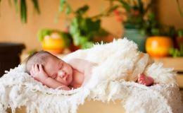 Как выбрать гнездо для новорожденного