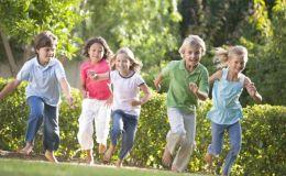 3 активные игры для детей по мотивам «Книги джунглей»