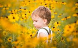 8 распространенных растений, смертельно опасных для ребенка