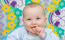 Пищевые добавки Е в детском печенье: это опасно или нет?
