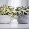 5 видов цветов, которые опасно оставлять в спальне