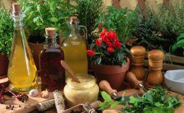 Как снизить уровень холестерина: 5 лечебных трав