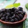 Когда можно давать шелковицу детям: 7 полезных свойств ягоды