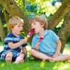 5 способов определить, какое мороженое опасно для ребенка