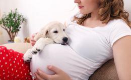 Подготовка к родам: что нужно есть, чтобы избежать разрывов