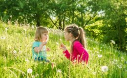 7 правил при укусе насекомых. Когда обращаться к врачу?