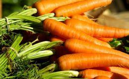 Как быстро похудеть: морковная диета — минус 3 кг за 4 дня