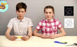 Как сделать красивые штампы для дневника и не только. Видео Cool School