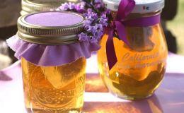Где купить мед, и как правильно выбрать этот ценный продукт