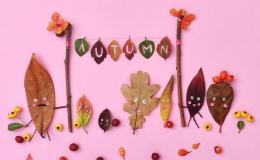 Топ-10 развивающих игр для детей с осенними листьями