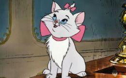 15 неоправданно забытых диснеевских мультфильмов для детей