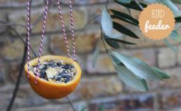 Как сделать кормушку для птиц с ребенком: 7 оригинальных идей