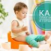 Как приучить ребенка к горшку: 9 советов психолога