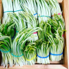 Польза и вред черемши: кому категорически запрещено есть этот зеленый подарок весны