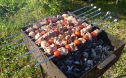 Где в Киеве можно пожарить шашлык и не заплатить штраф