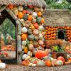 Готовимся к Хэллоуину — 5 необычных, но простых идей для детских игрушек из тыквы
