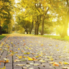 Куда пойти в Киеве на выходных 7 и 8 октября: лучшие идеи для всей семьи
