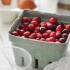 Витаминный бум: 5 самых полезных осенних ягод + рецепты с ними