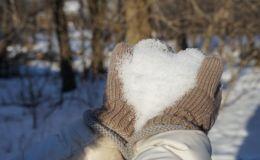 Первый снег: как встретили его звездные родители