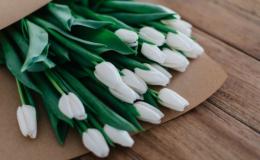 Не выходя из дома: 8 лучших цветочных магазинов Киева с доставкой на 8 марта